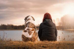 El animal debe ser sociable para ser un buen perro de terapia