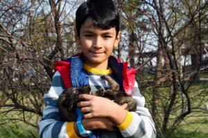 Impacto positivo de la terapia con mascotas