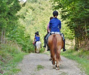 terapeuta y caballo