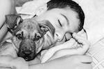 mascotas para el tratamiento del autismo